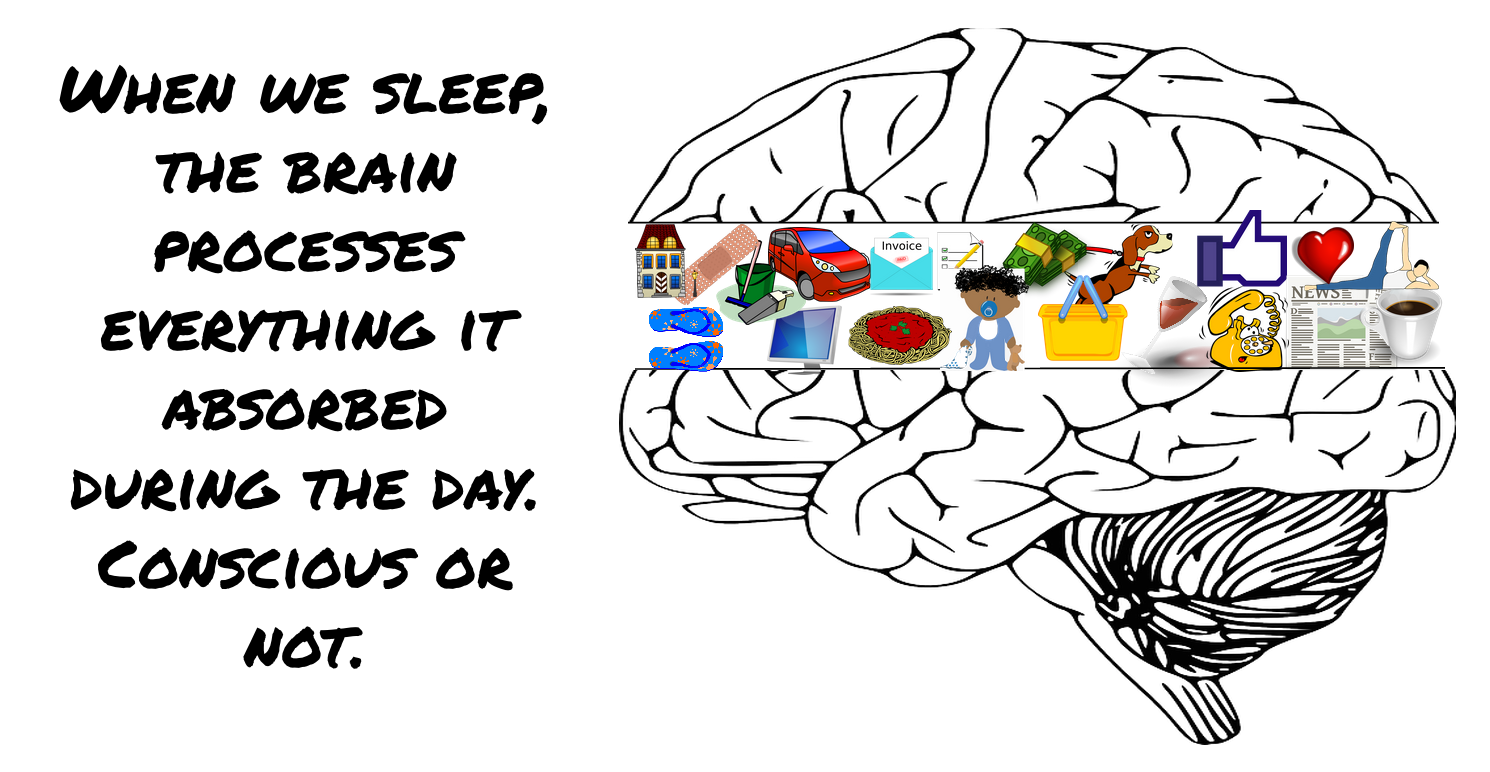 sleep and brain function